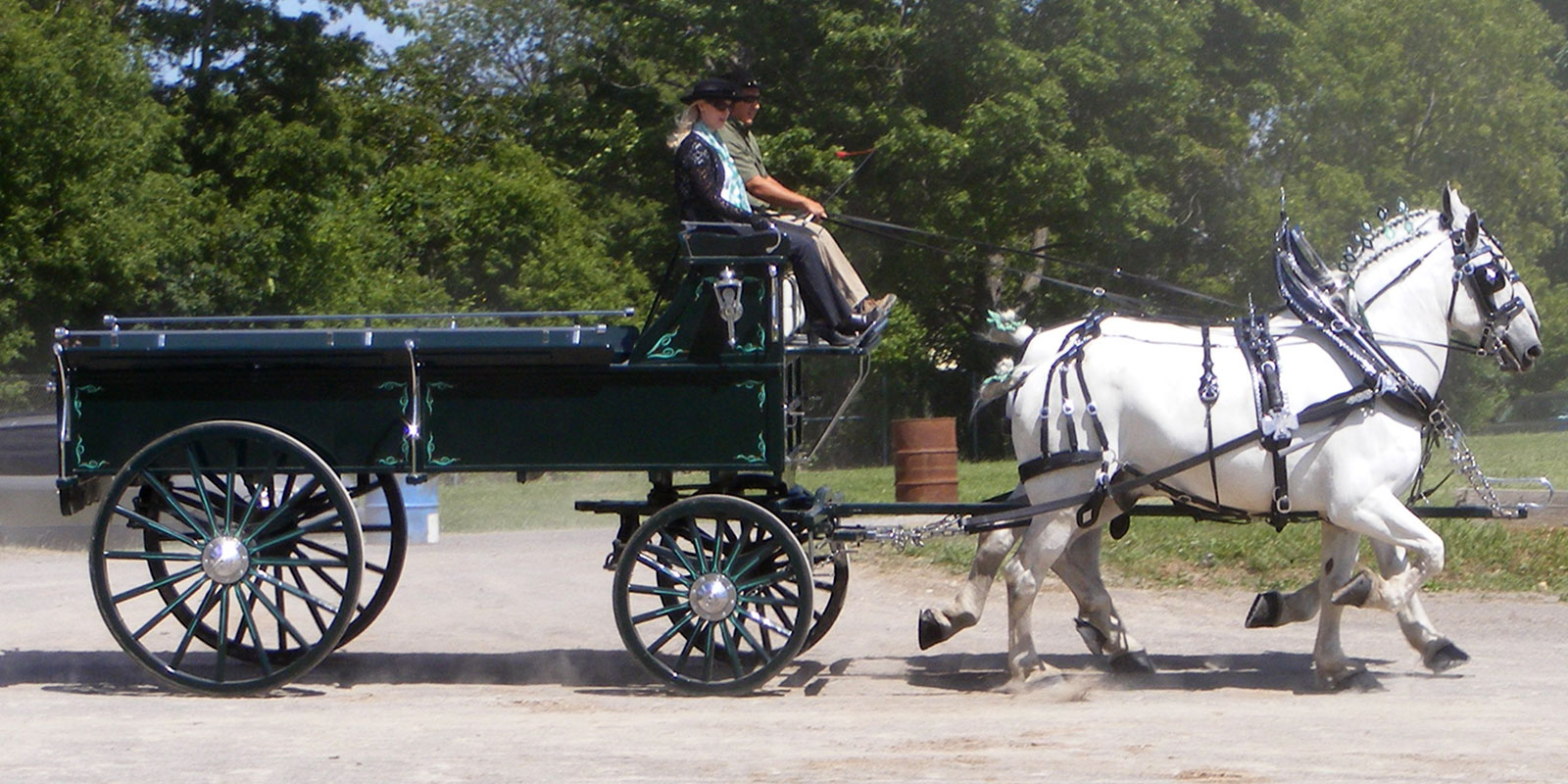 Horses-and-wagon