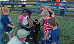 Farm Discovery Days @ Caledonia Fairgrounds | Caledonia | New York | United States